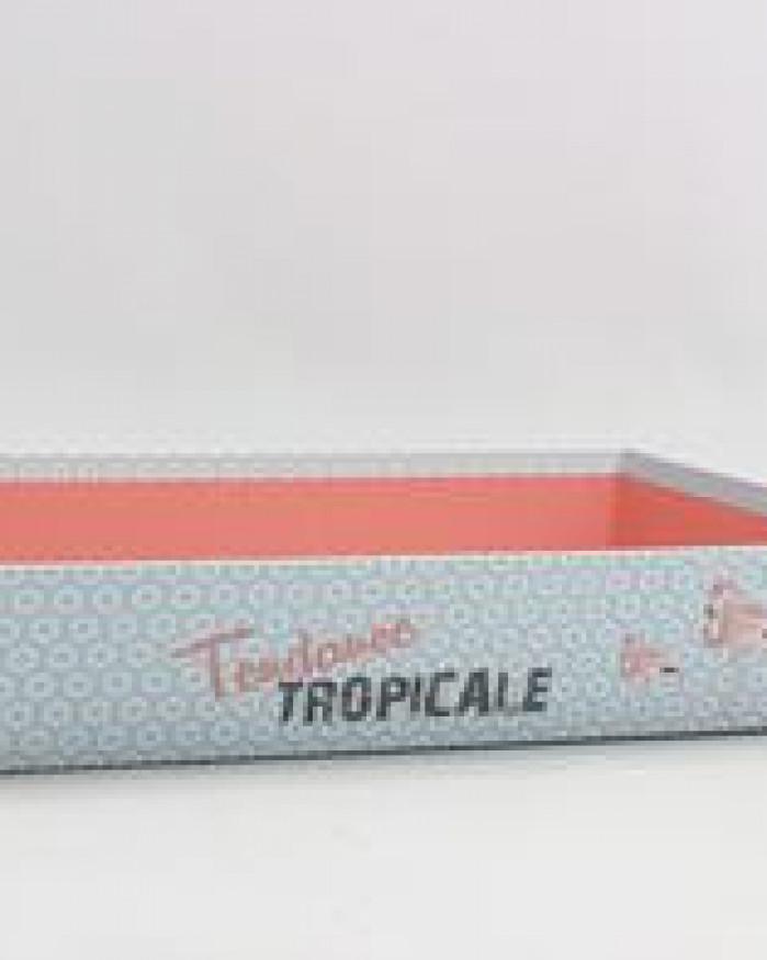 Corbeille tropicale