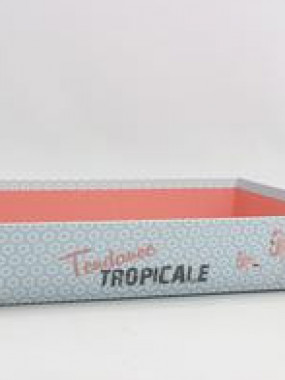 Corbeille tropicale